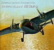 Модель-копия из бумаги самолета Ще-2