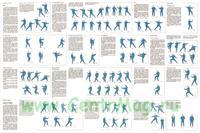 Комплект плакатов Китайская оздоровительная гимнастика Тайцзицюань