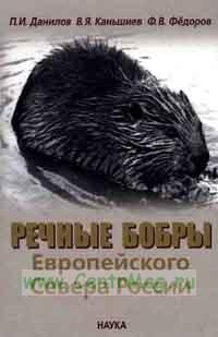 Речные бобры европейского севера России