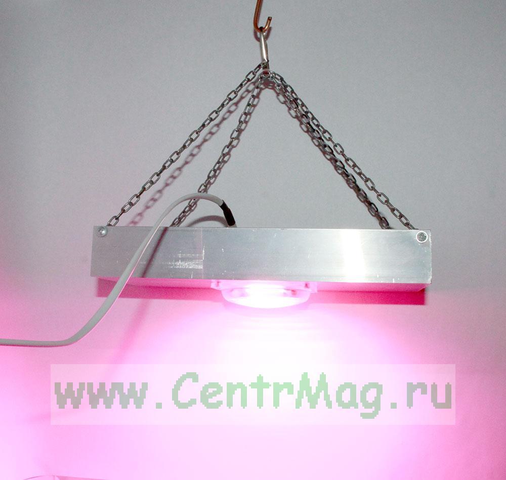 Фито прожектор для выращивания растений