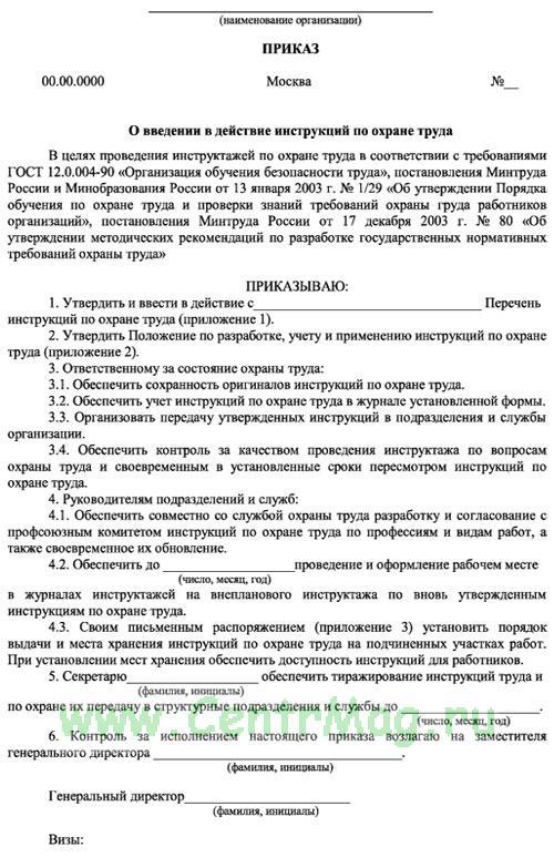 образец приказа о введении в действие инструкций по охране труда