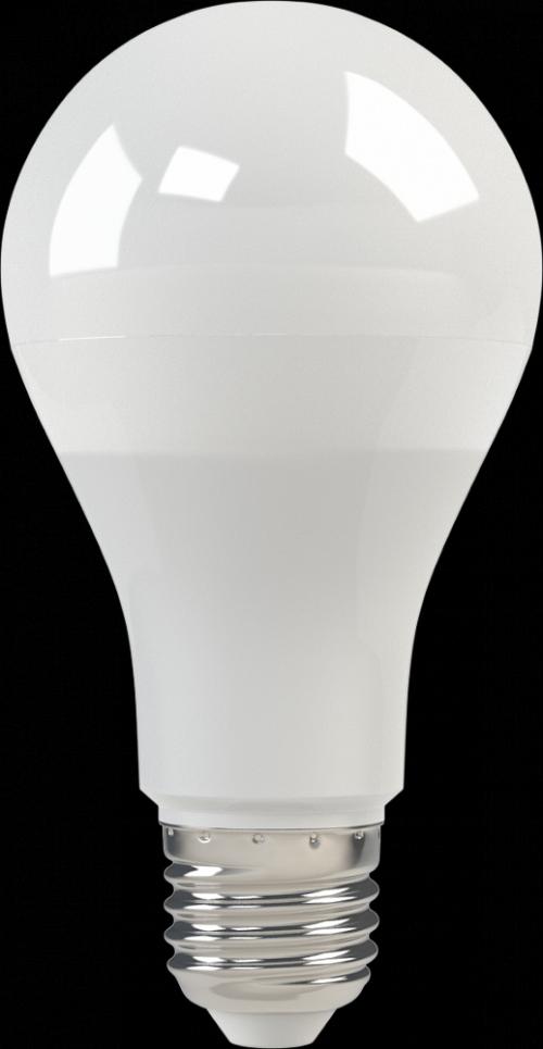 Светодиодная лампа Globe A65 E27 11W 3K 220V