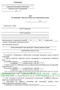 Акт обследования тупиковых упоров грузоподъемных кранов