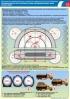 """Комплект плакатов """"Эксплуатация автомобильных шин"""". (6 листов, ламинат)"""