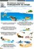"""Комплект плакатов """"Основные правила поведения на воде"""" (4 листа)"""