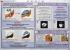 """Комплект плакатов """"Первая медицинская помощь в чрезвычайных ситуациях"""". (12 листов)"""