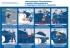 """Плакат """"Эксплуатация, обслуживание и ремонт магистральных и подпорных насосных агрегатов"""""""