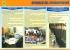 """Комплект плакатов """"Уголок безопасности образовательного учреждения"""" 8 листов."""