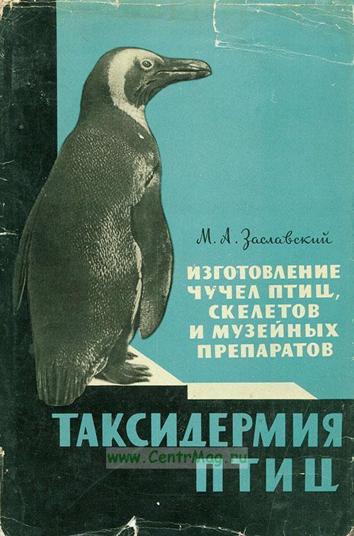 Таксидермия птиц. Изготовление чучел птиц, скелетов и музейных препаратов