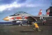 Модель-копия из бумаги самолета F-14A