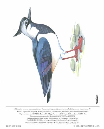 Птицы в картинках: наглядное пособие для педагогов, логопедов, воспитателей и родителей. Выпуск 2