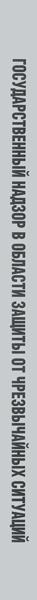 Государственный надзор в области защиты населения и территорий от чрезвычайных ситуаций природного и техногенного характера. Сборник документов