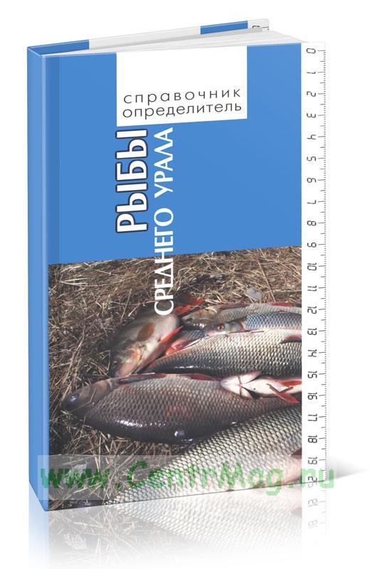 Рыбы Среднего Урала. Справочник - определитель