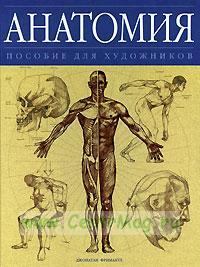 Анатомия. Пособие для художников