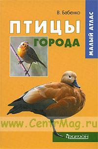 Птицы города. Малый атлас