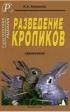 Разведение кроликов. Справочник