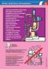 "Комплект плакатов ""Охрана труда. Врач отоларинголог. Врач офтальмолог"". (2 листа)"