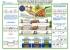 """Комплект плакатов """"Ограждение мест производства путевых работ"""" (6 листов)"""
