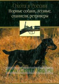 Норные собаки, легавые, спаниели, ретриверы. Охота в России